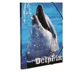 Vihikumapp A4 nurgakummidega, Junior delfiinid