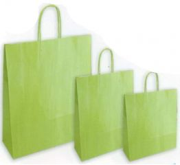 Sangadega kott pärlmutter roheline 36x12x41