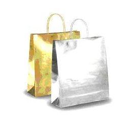 Sangadega kott hõbedane
